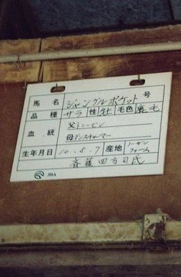 厩舎にて(1)